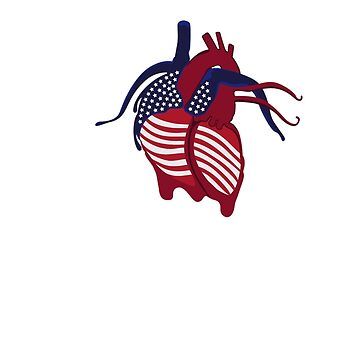 American Heart by lorenzspa