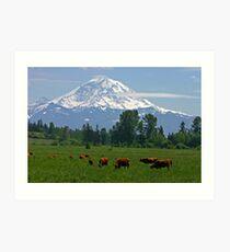 Country scene near Mt. Rainier  Art Print