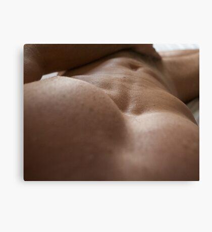 torso 10301 Canvas Print