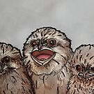 Frogmouth Chicks by itssabbyg