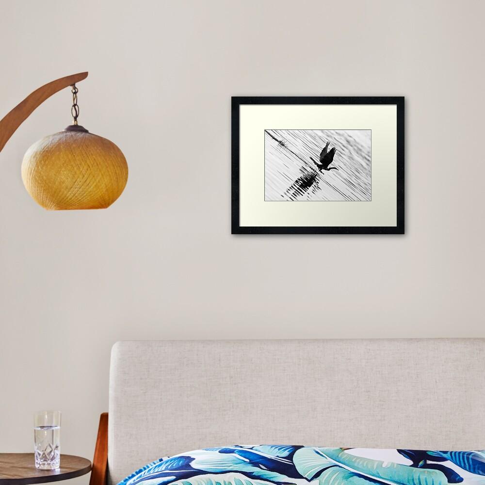 Flying shag Framed Art Print