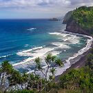Pololu Valley Lookout by Alla Gill
