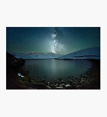 Starry tree Photographic Print