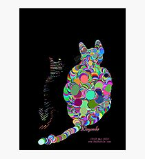 CALICO CAT Photographic Print
