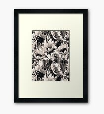 Sunflowers in Soft Sepia Framed Print