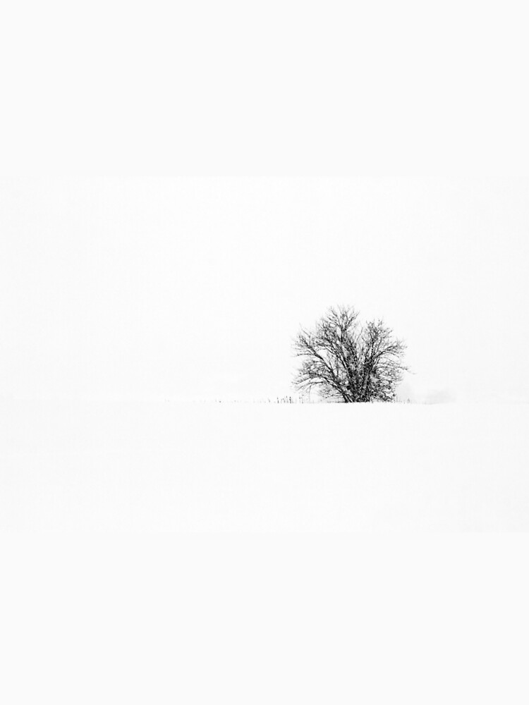 25.1.2019: Lonely Tree in Snowfall by Wolfheart