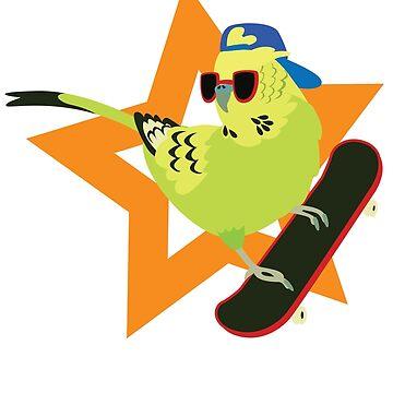 Skate Birding von jaffajam