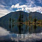Mt Te Kinga by Mike Johnson