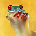 Red eyed tree frog on yellow by FrogtographerUK