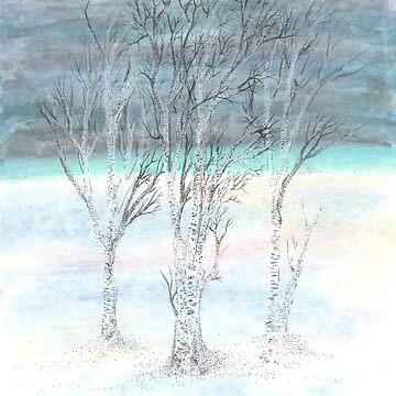 Under Northern Skies by rvalluzzi