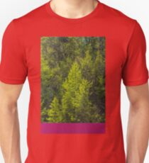 Trees and a container T-Shirt