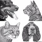 Cats and Dogs by KatePriestman