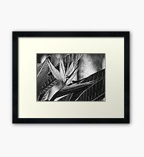 Textured Framed Print
