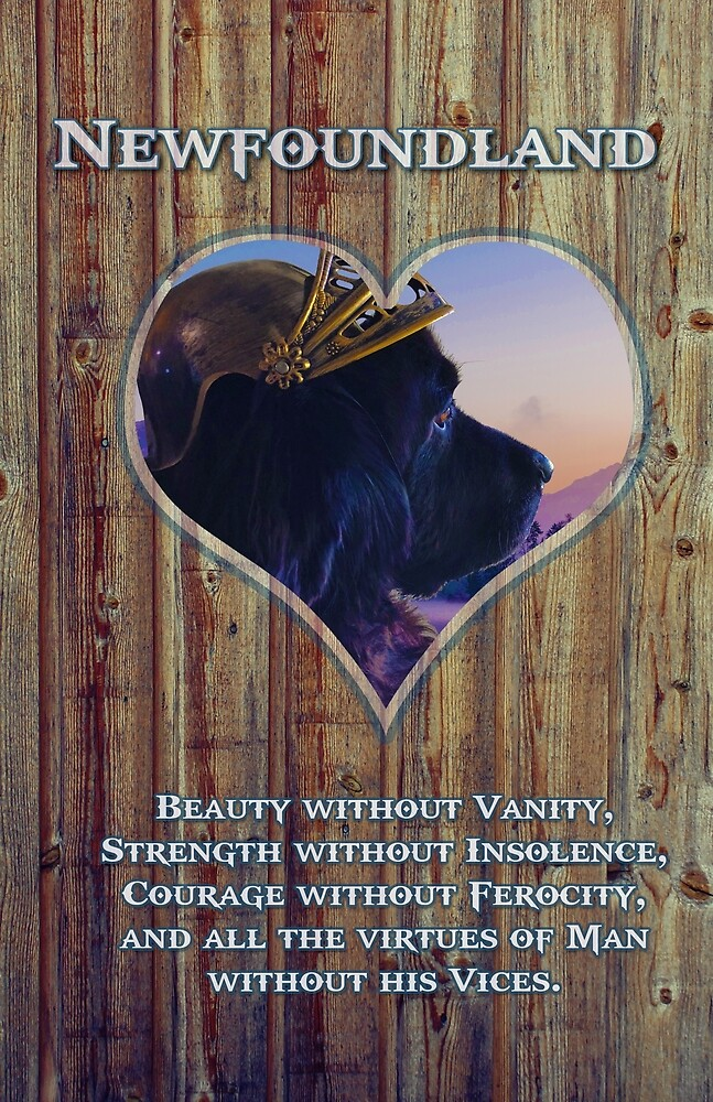 Newfoundland Viking Dog with Lord Byrons Excerpt by Christine Mullis