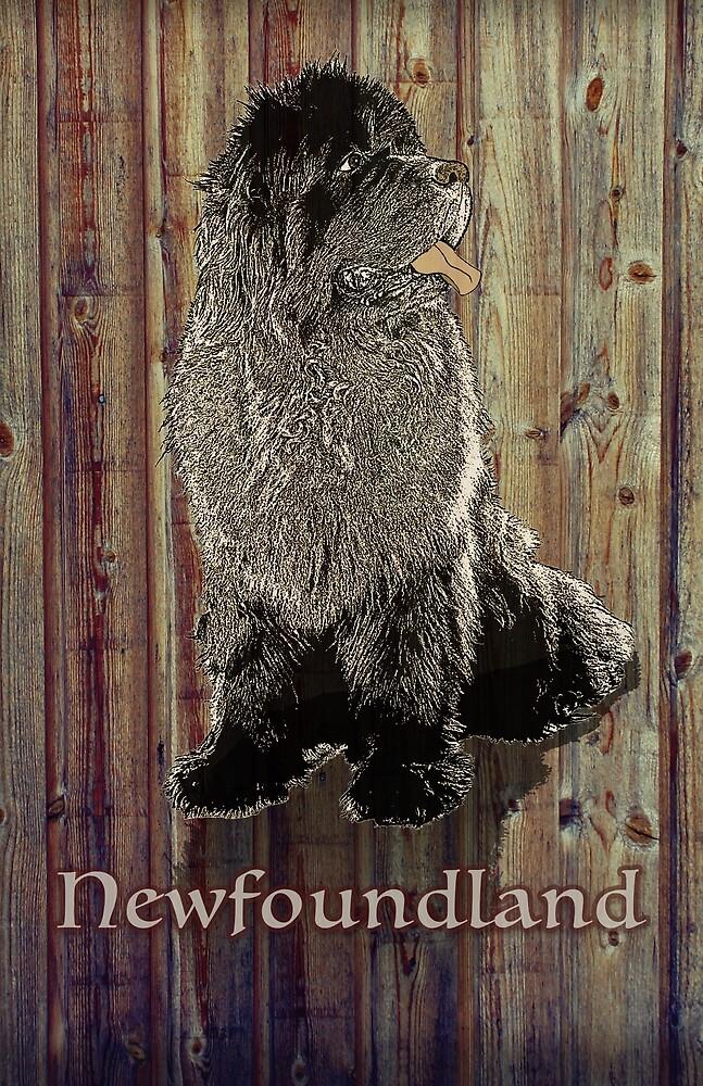 Newfoundland Dog against Wood Background by Christine Mullis