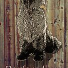 Newfoundland Dog against Wood Background by Christine Mullis