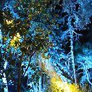 Magical light by agnessa38