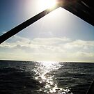 8 AM in the Pacific Islands by lidarcy
