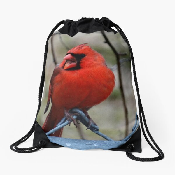 Mr. Red Northern Cardinal Drawstring Bag