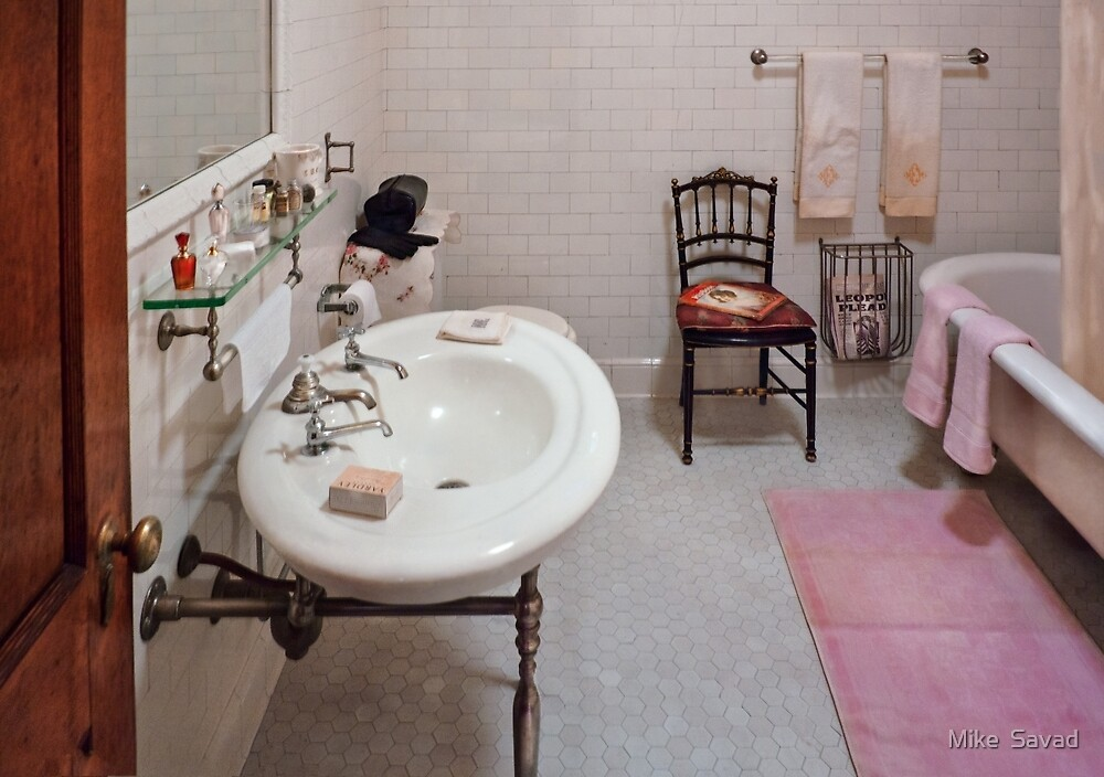 Building Trades - Plumber - The Bathroom  by Mike  Savad