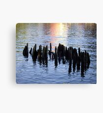 Old Pilings Along the Rondout Canvas Print