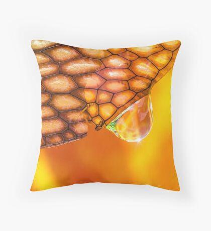 Elixir of the Sacral Chakra Throw Pillow