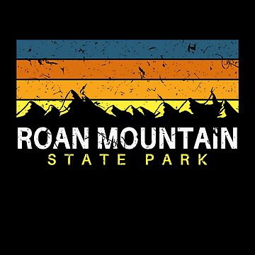 Roan Mountain State Park Tennessee Vintage by fuller-factory