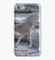 Baby Mountain Goat iPhone Case/Skin