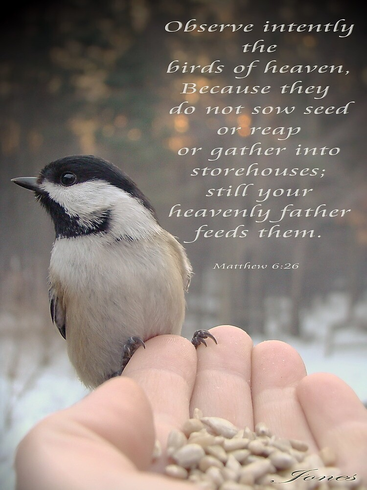 """Your Heavenly Father Feeds Them"" by Gail Jones"