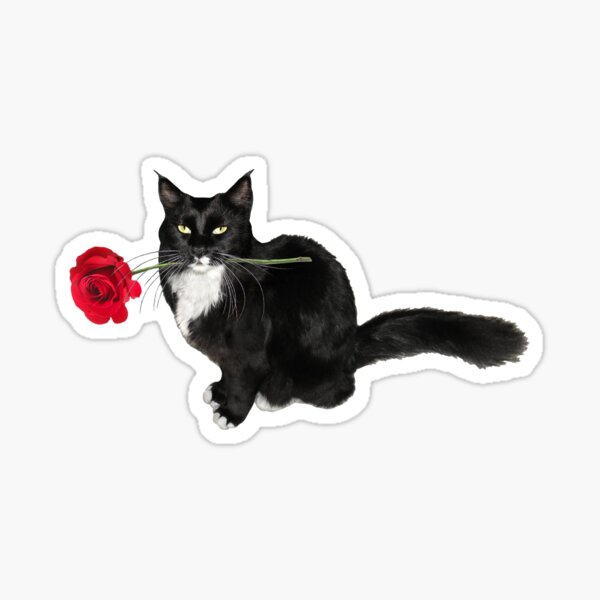 Tuxedo Cat Red Rose Sticker