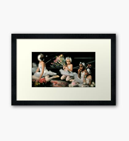 Young Swan Distracted Framed Print