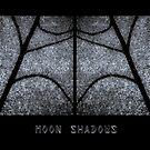 Moon Shadows by Tom Vaughan