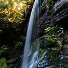 Russell Falls by CezB