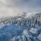 Arber Summit by Michael Breitung