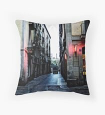 [P1300190 _UFRAW _GIMP _1] Throw Pillow