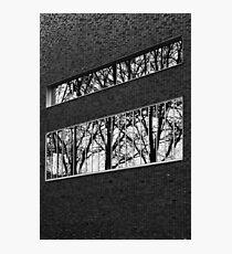 Reflectivi-tree Photographic Print