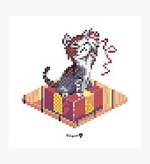 Kitten playing with Ribbon - Present Cube Photographic Print