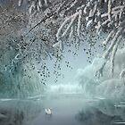 White Swan by Igor Zenin