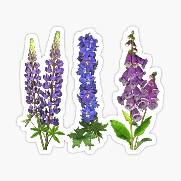 Purple June Garden Sticker