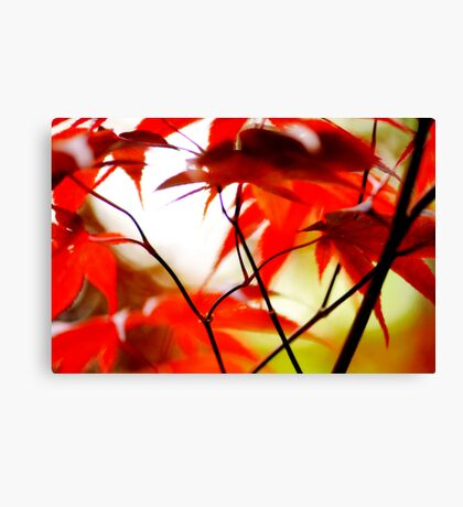 Spring Watercolours Canvas Print