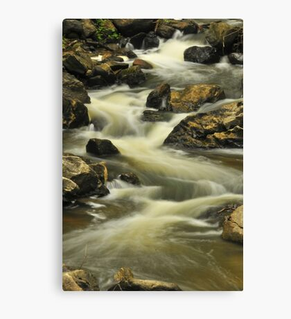 Waterfall - Old Chelsea, Quebec Canvas Print