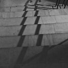 Railing Shadows by Stephen Knowles