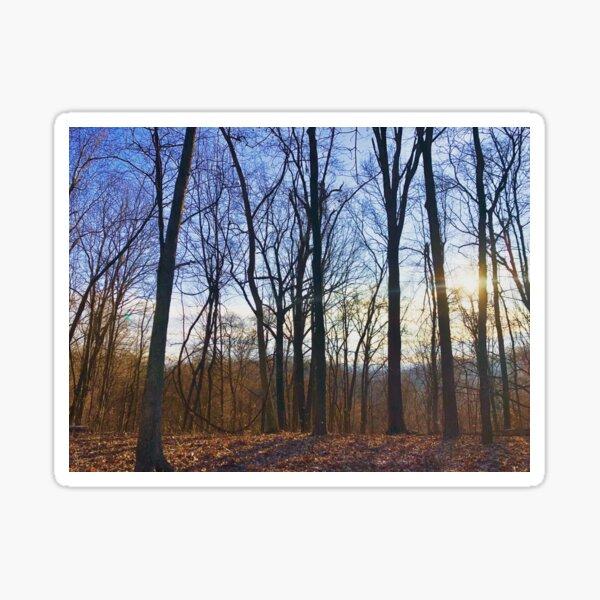 Winter Blue Sticker