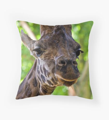 I've always looked up to giraffes... Throw Pillow