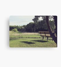 Late afternoon vision Canvas Print
