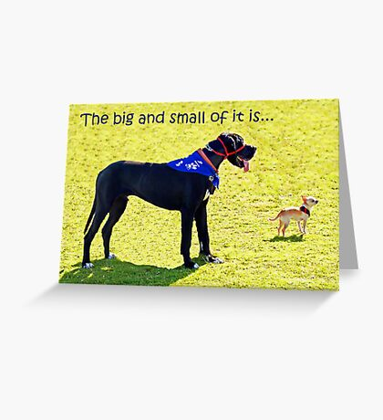 The big and the small of it is... Greeting Card