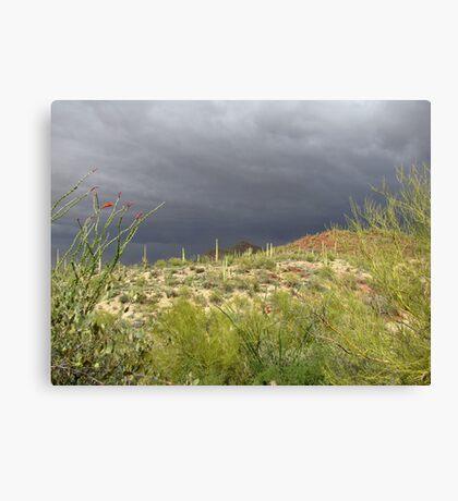 Sonoran Scenery Series ~ 2 ~ Storm over Sonora  Canvas Print