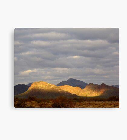 Sonoran Scenery Series ~ 3 ~  Spotlight Canvas Print