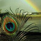 Feather & Rainbows by starbucksgirl26