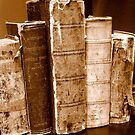 Tattered Books by Dana Roper